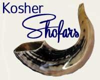 Jewish Holidays Shofars